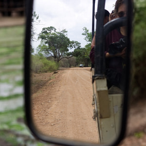 On a game drive in Zambia