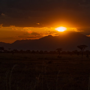 The sunset in Mikumi National Park